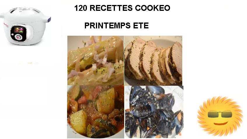 120 Recettes cookeo Printemps été